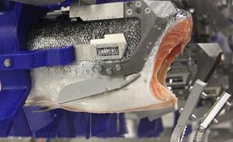 Salmon Deheader